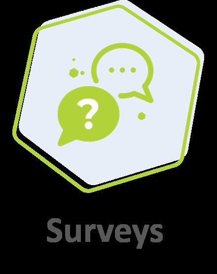 Surveys_2020-1